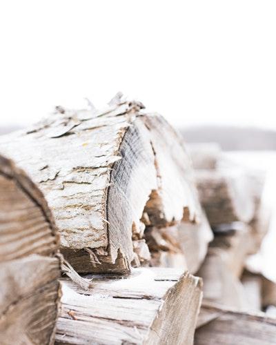 Woodworm treatment